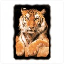 Golden Tiger Wall Clock